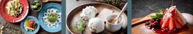 (左)オリジナルタパス各種:380円~(税別) (中央)手作りフレッシュチーズ盛り:1,090円(税別) (右)マスカルポーネのティラミス:690円(税別)