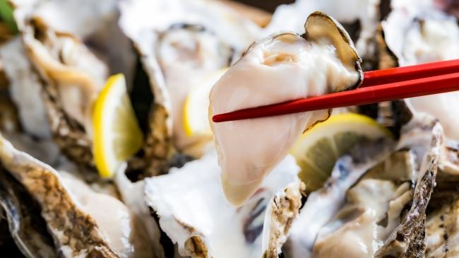 生 牡蠣 食べ 放題 東京