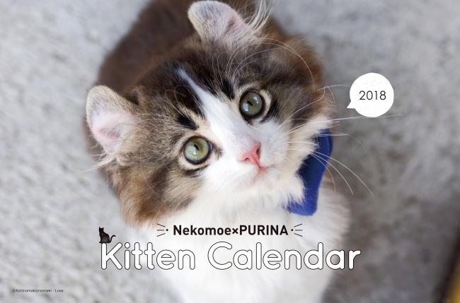 2018年「子ねこ」カレンダー