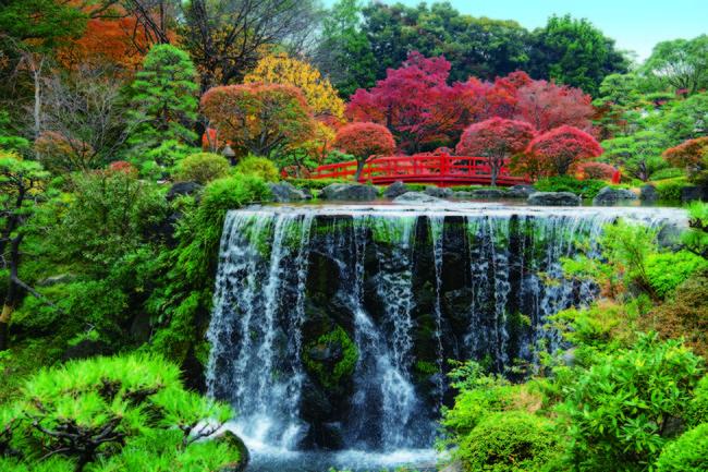 フルハイトウインドウから望む日本庭園の紅葉