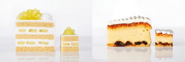 左:スーパーメロンショートケーキ 右:東京スーパーチーズケーキ
