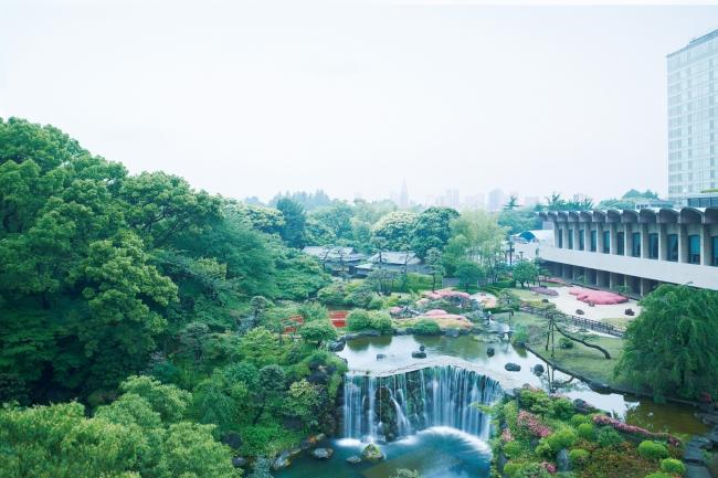 400年の歴史を誇る、1万坪の日本庭園