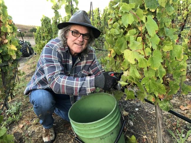 俳優カート・ラッセルのワイナリーから日本初上陸となる「GoGi Wines(ゴジ・ワインズ)」