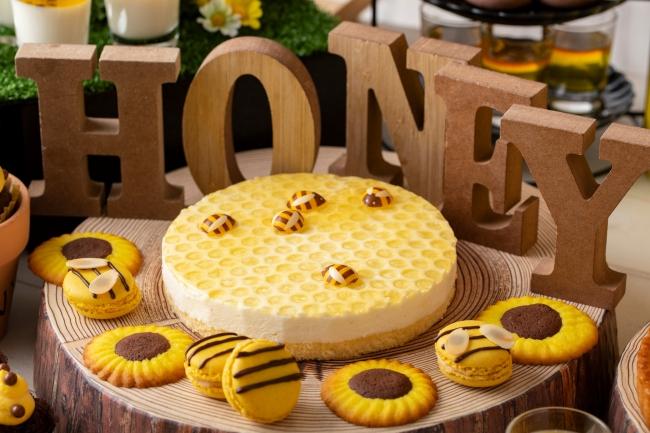 ハニカムレアチーズケーキ