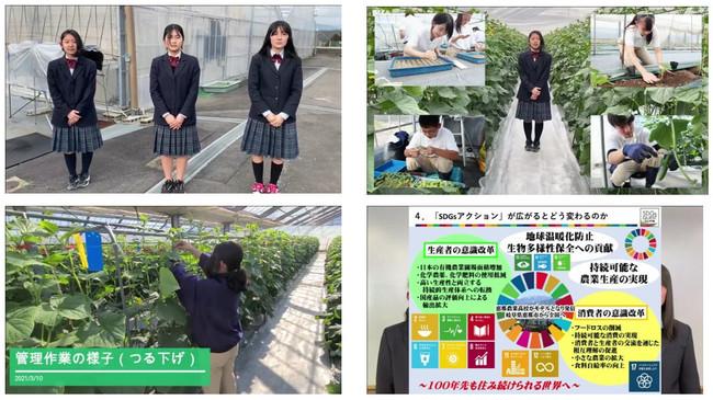 未来農業班(岐阜県立恵那農業高等学校)の作品より