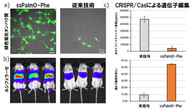 図2 a)タンパク質蛍光を従来技術と比較した結果。b)遺伝子発現量をルシフェラーゼの発光量で比較した結果。赤い方が発光量が多い。 c)CRISPR/Casによる遺伝子編集の結果。
