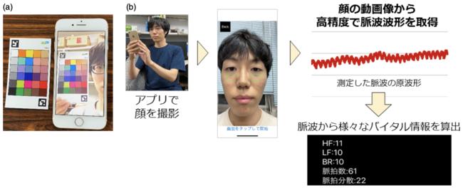図1: (a)カラーチャートを使用した顔画像の色補正 (b)スマートフォンを用いた非接触バイタルセンシングの流れ。ここでは心拍数、脈拍数、自律神経指標 (注2)の計測に成功