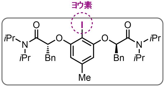 図3:本研究で新たに開発したアミノオキシ化反応で使用するヨウ素触媒の構造式