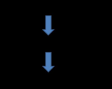 図2:ポドサイトの プロテアソーム機能低下による影響