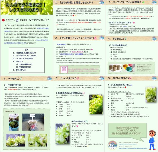 企画の詳細(投稿方法、育て方、食べ方など)