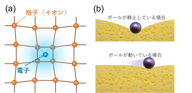 図2 (a)ポーラロン効果の模式図。電子が周囲の格子(イオンの配置)を歪めて安定化する。(b)スポンジの上に置いたボールの様子。静止したボールは深く沈むが、動いているボールは沈みにくい。