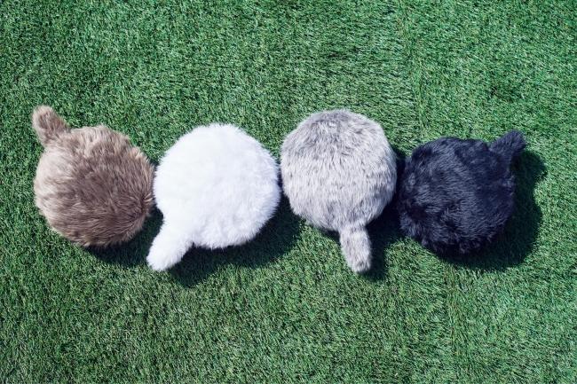カラーバリエーションは、柔らかい色合いのマロン(茶)、 ブラン(白) 、グリ(灰) 、ノワール(黒) の4色