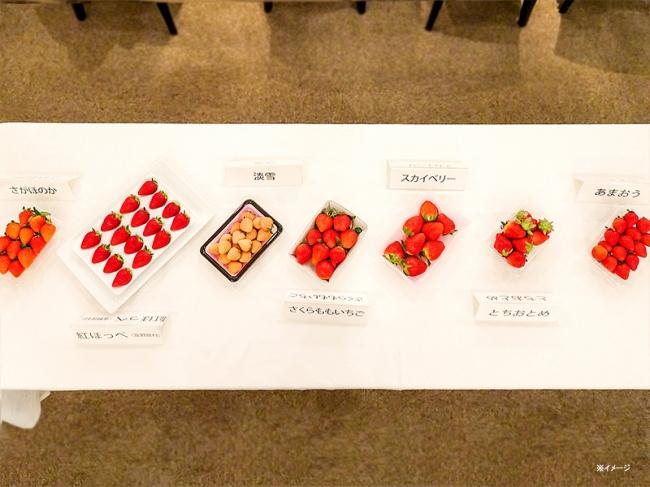 過去のイチゴイベントで使用したイチゴ(今回使用するとは限りません)