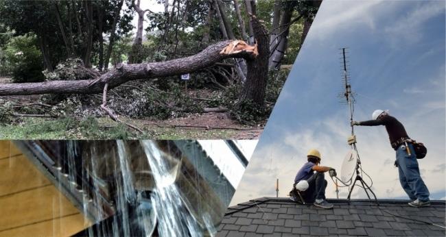 調査】台風15号(ファクサイ)による被害状況と台風通過後に起きやすい ...