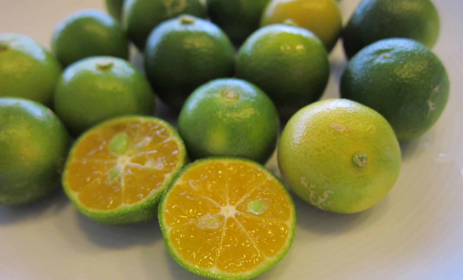 多く 食品 含む を ノビレチン ルテインを多く含む食べ物・食材23選!野菜や果物の含有量はどれくらい?
