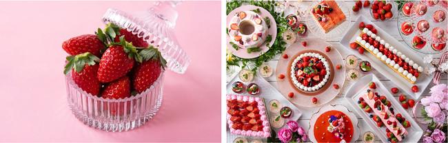 千葉県産の苺をおひとり一皿ずつ提供