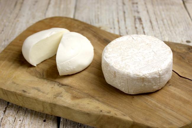 発酵食品チーズ