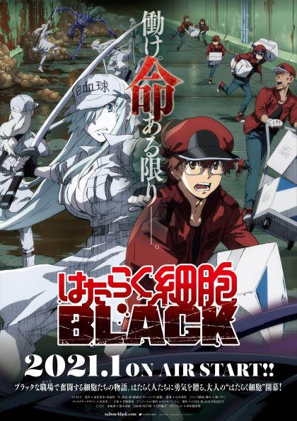はたらく細胞BLACK」2021年1月TVアニメ化決定!|株式会社アニプレックスのプレスリリース