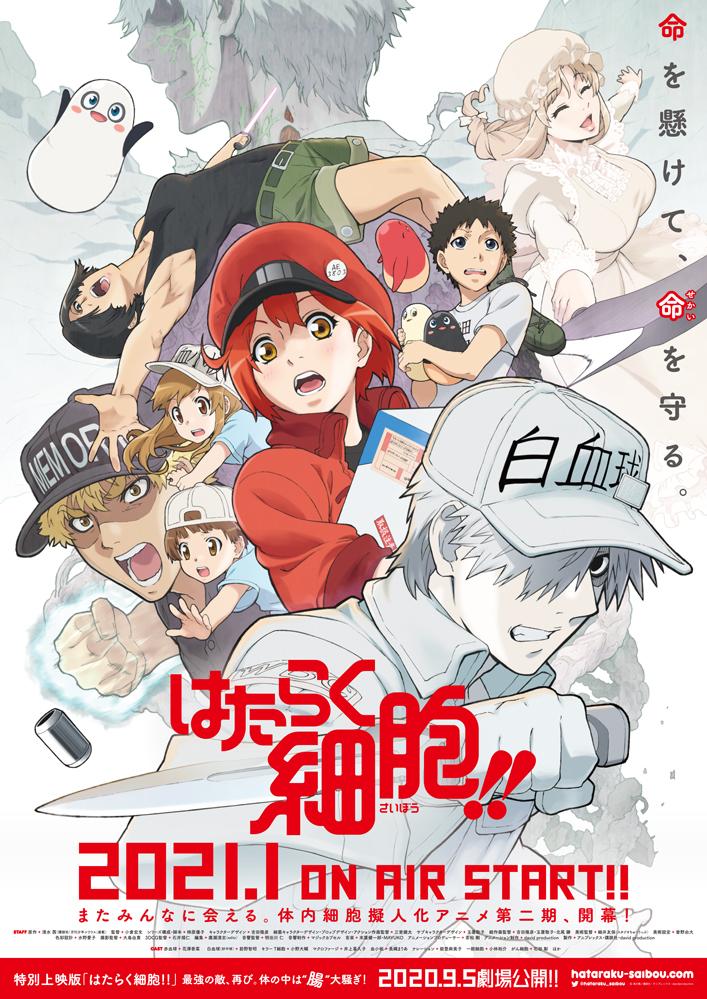 TVアニメ「はたらく細胞」(第1期) 再放送決定!合わせてABEMAにて特番放送実施!|株式会社アニプレックスのプレスリリース
