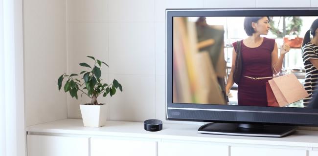 テレビで放送されている気になるトピックを声だけで記録
