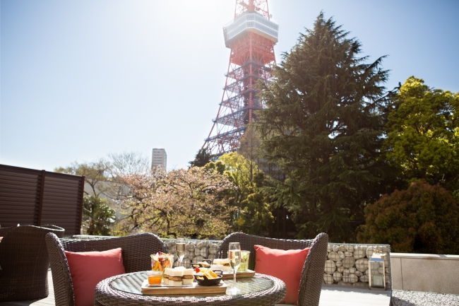 TOWER VIEW TERRACE-LUXURY PICNIC-