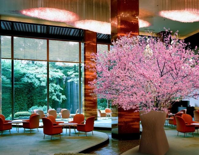 メインラウンジ桜の木(イメージ)