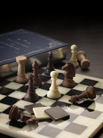 """""""チェス""""をイメージした「リーブルチェス」(イメージ)"""