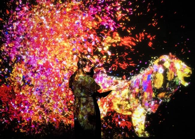 チームラボ 学ぶ!未来の遊園地と、花と共に生きる動物達(イメージ)