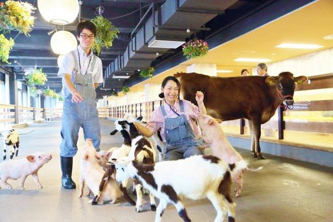 酪農業界への就職・転職イベント『 #酪農リクルーティングフェア 』 東京「 #大手町牧場 」3/17(土) #パソナ #丹後王国 #牧場 #酪農 #イベント情報 #アルパカ @ JOB HUB SQUARE 13階 大手町牧場 | 千代田区 | 東京都 | 日本