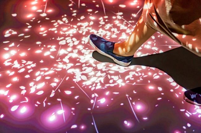 桜の絨毯の上を歩くと花びらが舞います。