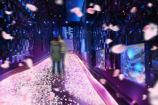 桜のトンネルを歩いているかのような没入感を体験できます。