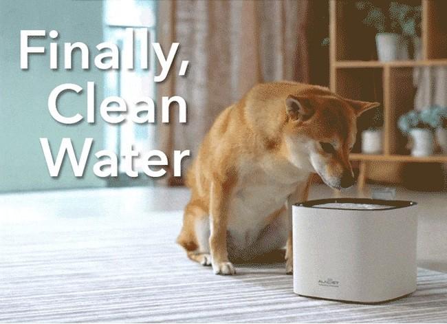 愛する家族に、美味しくて安全な水を!