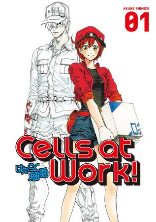 米国で発売されている英語版の『はたらく細胞』