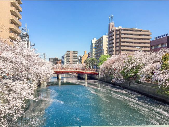 横浜・大岡川
