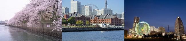 満開の大岡川と横浜のベイエリアを堪能いただけるコース