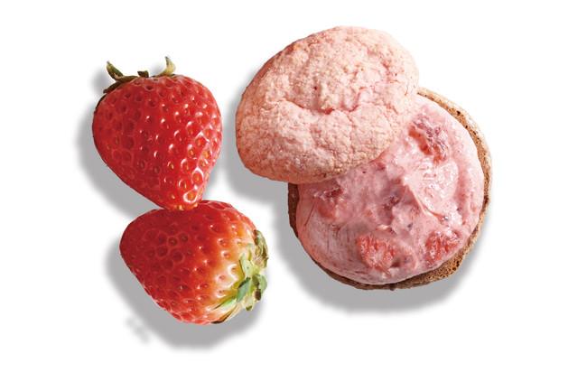 苺のクリームサンド