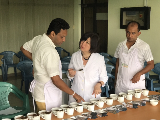 現地でのテイスティング場面。カレルチャペック紅茶店向けのオーダーメイドのコラボ紅茶を作り上げている。
