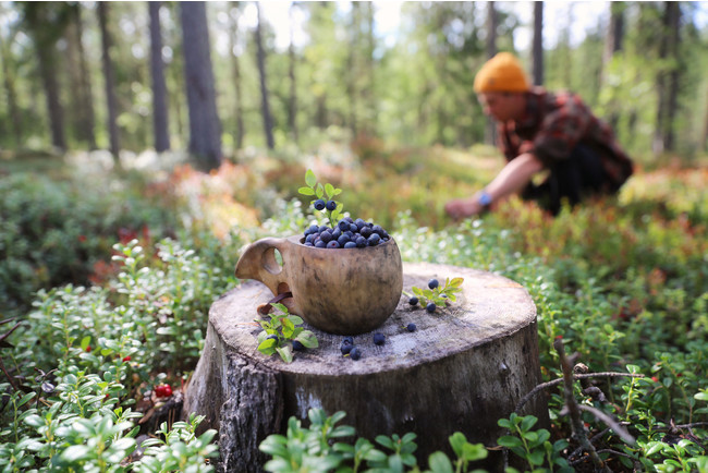 Photographer: Harri Tarvainen