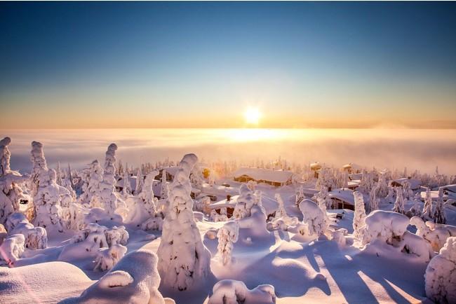 Tiina Tormanen, Visit Finland