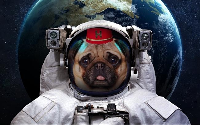 宇宙服を着て営業を行うHotels.comの 専属コンシェルジュ「ナンパグ」