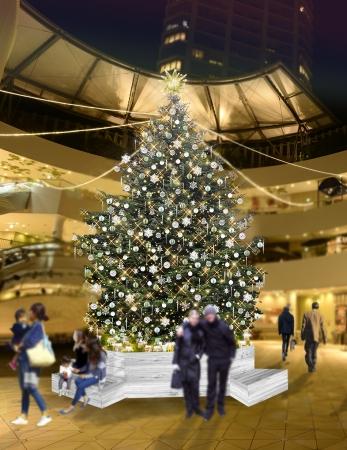 8mの生モミの木のクリスマスツリーが登場