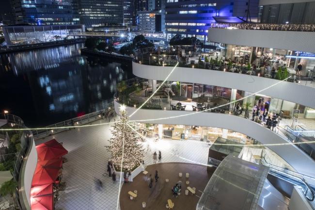 横浜ベイエリアを臨む開放的な広場に、高さ約8mの本物のモミの木を使ったクリスマスツリーが登場(写真は昨年の様子)