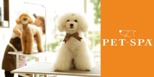3月8日(金)オープン「PET-SPA」