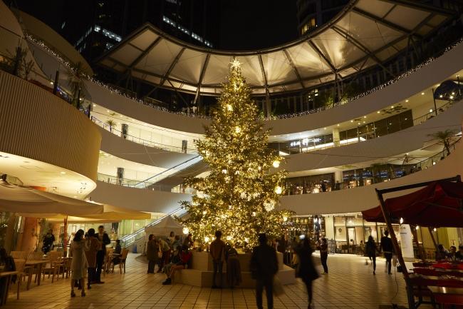 高さ8mのクリスマスツリーが登場(画像は昨年の様子)