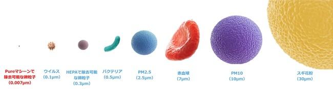粒子のサイズイメージ