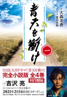 ドラマ 2021 大河 nhk