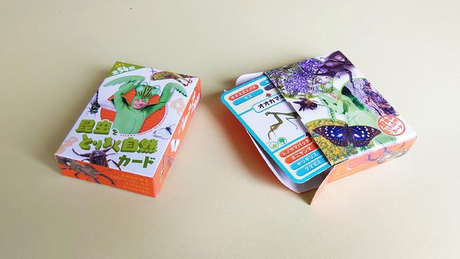 昆虫カードケース