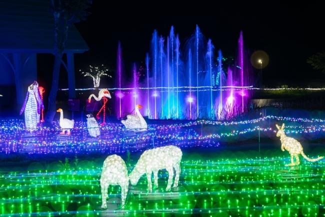 光の噴水ショ-