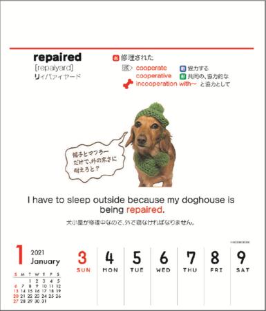 ワン単カレンダー※イメージ