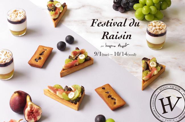 Festival du Raisin (レザン フェスティバル) image